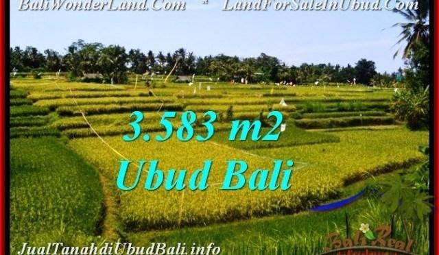 TANAH MURAH DIJUAL di UBUD 35.83 Are di Ubud Pejeng
