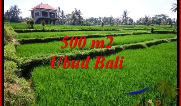TANAH di UBUD JUAL MURAH 5 Are View Sawah, link. villa