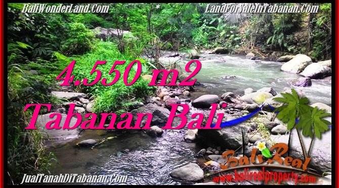 JUAL TANAH MURAH di TABANAN BALI 4,550 m2 View kebun dan sungai