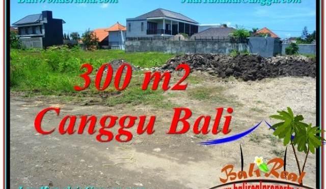 DIJUAL TANAH MURAH di CANGGU 300 m2 di Canggu Brawa