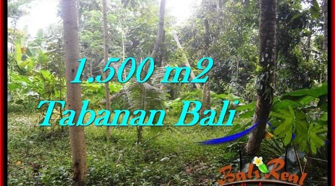 DIJUAL TANAH di TABANAN 1,500 m2 di Tabanan Penebel