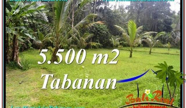 DIJUAL TANAH di TABANAN Untuk INVESTASI TJTB295