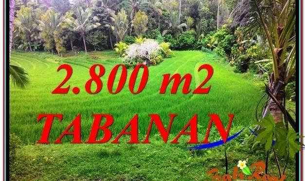 TANAH MURAH JUAL TABANAN 2,800 m2 View sawah