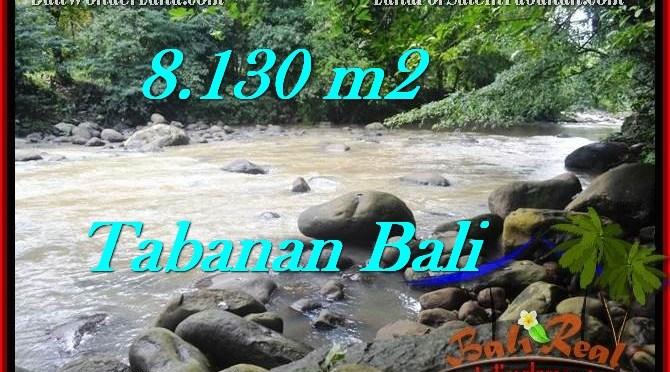 JUAL MURAH TANAH di TABANAN BALI 8,130 m2 View sawah, sungai dan gunung