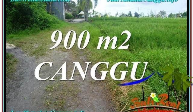 JUAL TANAH MURAH di CANGGU 9 Are View sawah lingkungan villa
