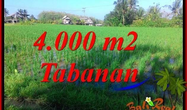 JUAL MURAH TANAH di TABANAN BALI 4,000 m2 View sawah