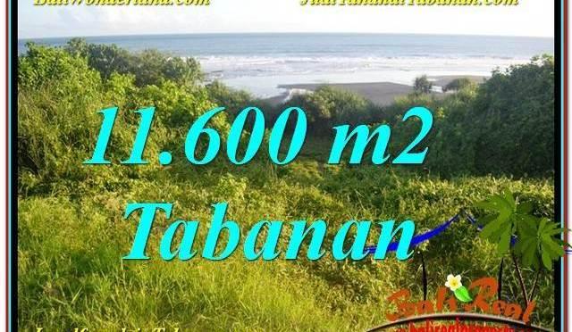 JUAL MURAH TANAH di TABANAN BALI 116 Are View Laut, Gunung dan sawah
