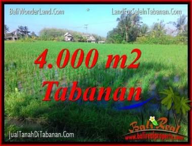 TANAH MURAH DIJUAL di TABANAN Untuk INVESTASI TJTB352