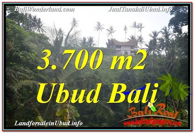 TANAH DIJUAL DI UBUD BALI 3,700 m2 View Tebing dan Sungai, Link. Villa