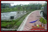 TANAH MURAH di CANGGU 600 m2 View sawah, lingkungan villa