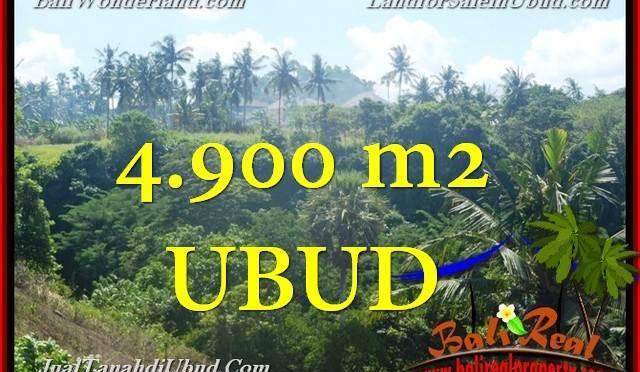 TANAH di UBUD DIJUAL MURAH 49 Are di Ubud Gianyar