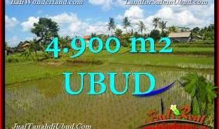 INVESTASI PROPERTY, DIJUAL TANAH MURAH di UBUD TJUB652