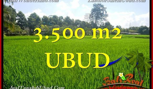 TANAH di UBUD BALI DIJUAL 3,500 m2 di Ubud Gianyar