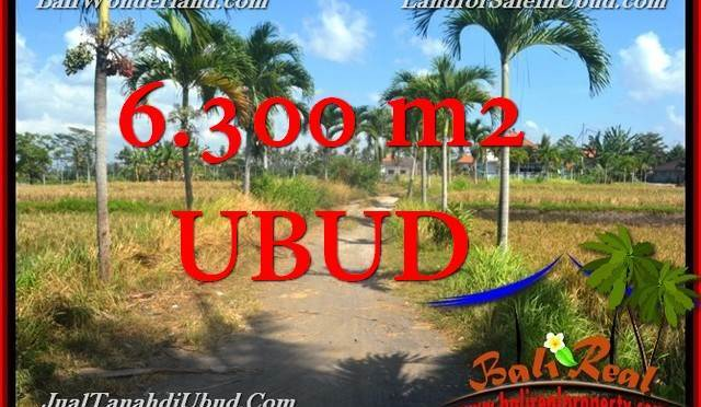 TANAH di UBUD JUAL 6,300 m2 View Tebing link Villa