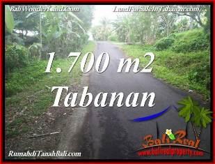 JUAL MURAH TANAH di TABANAN BALI Untuk INVESTASI TJTB385