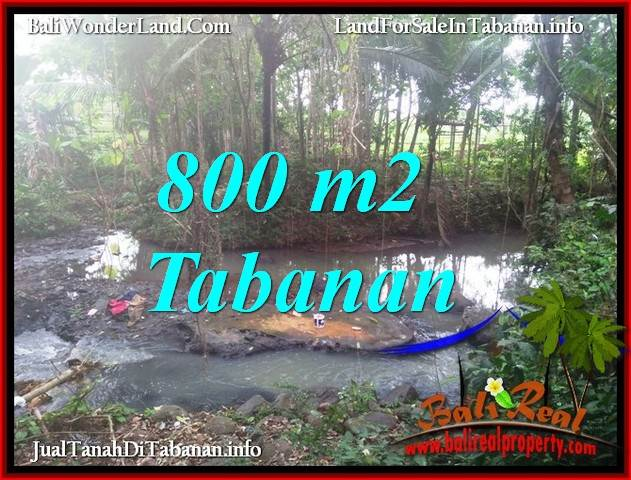 TANAH MURAH DIJUAL di TABANAN BALI 8 Are VIEW KEBUN DAN SUNGAI