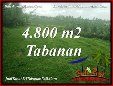 TANAH DIJUAL di TABANAN 4,800 m2 di TABANAN SELEMADEG