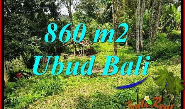 Dijual Murah Tanah di Ubud 860 m2 di Ubud Tegalalang