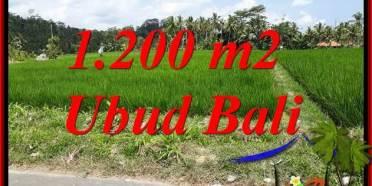 Dijual Murah Tanah di Ubud TJUB694