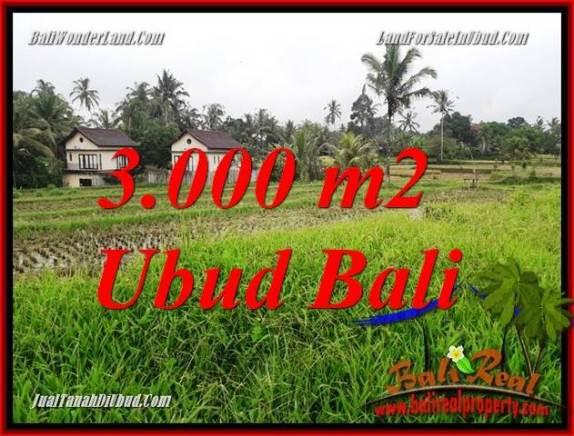 Tanah Murah di Ubud jual 3,000 m2 View sawah dan pangkung
