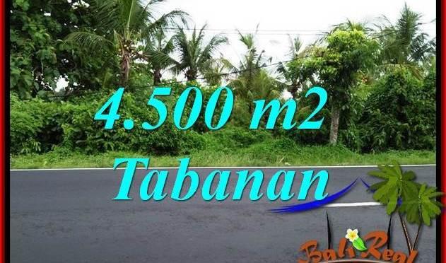 Dijual Murah Tanah di Tabanan TJTB395