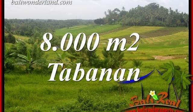 Tanah Murah di Tabanan jual 8,000 m2 View Sawah