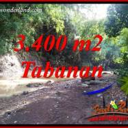 Dijual Murah Tanah di Tabanan Bali 3,400 m2 di Tabanan Selemadeg