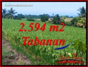 Dijual Murah Tanah di Tabanan Bali 2,594 m2 di Tabanan Selemadeg