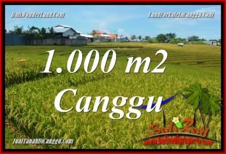 Jual Tanah Murah di Canggu - Land for sale in Canggu Bali