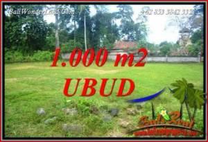 Tanah Murah di Ubud Dijual 1,000 m2 di Ubud Pejeng