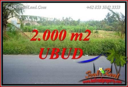 Tanah di Ubud jual Murah 2,000 m2 View sawah lingk. restorant
