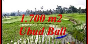 INVESTASI PROPERTI, DIJUAL MURAH TANAH di UBUD BALI TJUB770