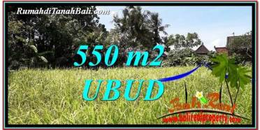 DIJUAL MURAH TANAH di UBUD 550 m2 di Sentral Ubud