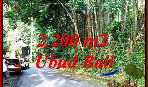 INVESTASI PROPERTY, JUAL MURAH TANAH di UBUD BALI TJUB768