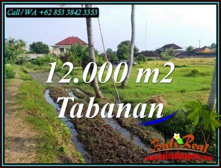 TANAH JUAL MURAH TABANAN 120 Are VIEW SAWAH DEKAT PANTAI