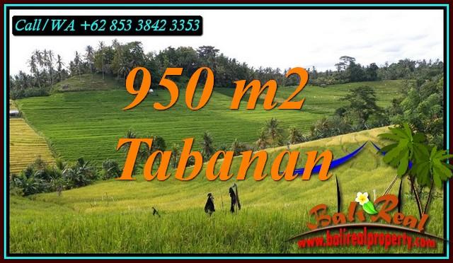 TANAH MURAH di TABANAN BALI DIJUAL 950 m2 di SELEMADEG TIMUR