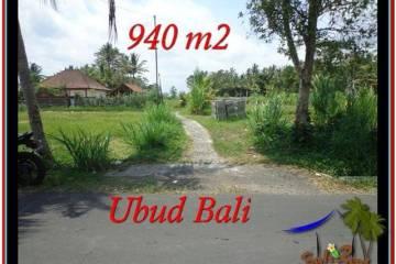 TANAH DIJUAL MURAH di UBUD Untuk INVESTASI TJUB531