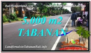 DIJUAL MURAH TANAH di TABANAN 50 Are di Badung