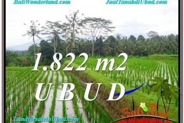 DIJUAL TANAH di UBUD BALI 18 Are di Ubud Payangan