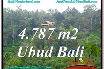 TANAH di UBUD BALI DIJUAL MURAH 4,787 m2 di Ubud Tampak Siring
