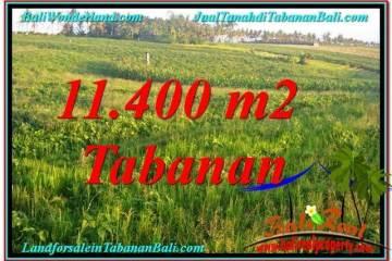 TANAH MURAH di TABANAN BALI DIJUAL 11,400 m2 di Tabanan Selemadeg