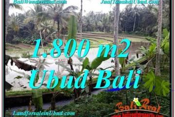 JUAL TANAH di UBUD BALI 1,800 m2 View Sawah