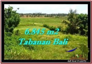 TANAH di TABANAN BALI DIJUAL MURAH TJTB245