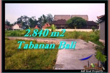 INVESTASI PROPERTI, TANAH MURAH DIJUAL di TABANAN BALI TJTB247