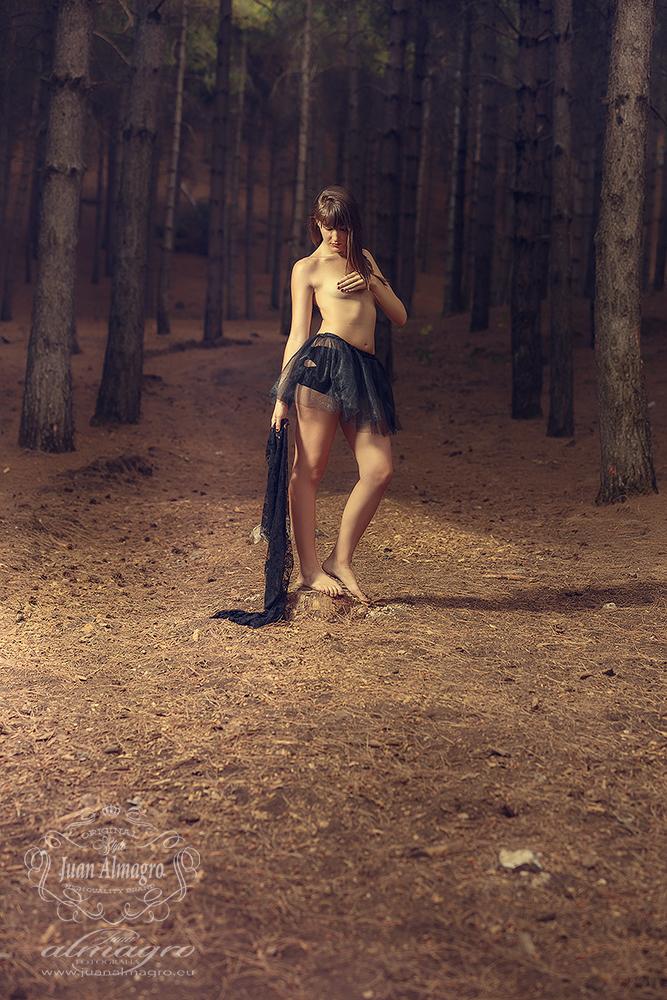 mimi-fotos-bosque-book-tutu-sesion-exteriores-fotografos-jaen-06