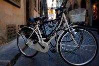 114. Toscana (Florencia) 0956