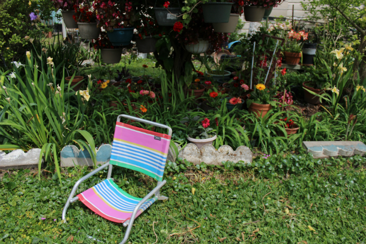 Primavera Picks: Our Favorite Mexican Pastimes For Spring