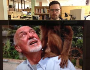 office-workers-morphed-animals