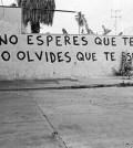 Acción Poetica Juárez