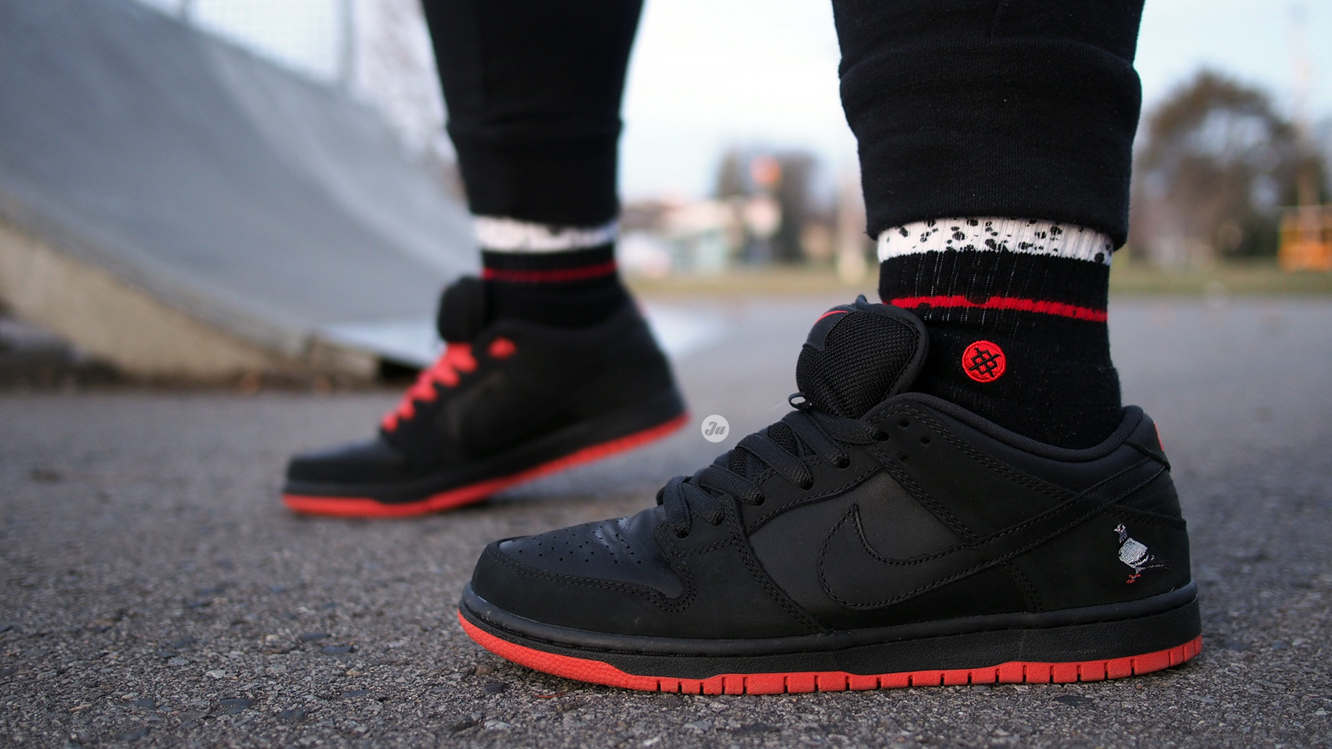 big sale a3f89 0e2c4 nike sb dunk low black pigeon on feet The Pigeon makes a return and it  totally lives up to the same hype .